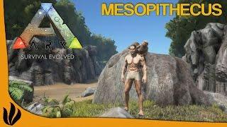 [FR] ARK: Survival Evolved - Présentation du Mesopithecus