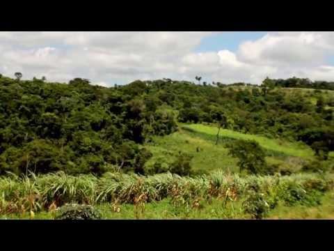 Guaraní kokue / Seguridad Alimentaria Sostenible
