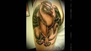 Значение тату грифон   фото готовых татуировок в картинках