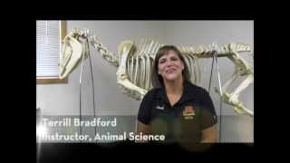 Animal Science at the University of Minnesota, Crookston - Instructor Terrill Bradford