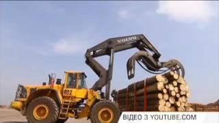 Массовая вырубка украинского леса и контрабандный трафик в Румынию. Факты недели, 23.10