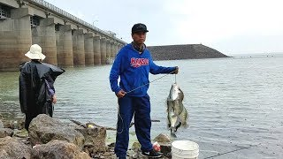 Crappie Fishing Catching SLABS From The Bank. part 1 EP 50