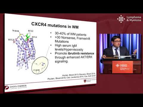 What Are The Best Front-line Therapies For Waldenström Macroglobulinemia?