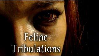***ASMR*** Feline Tribulations - Vampire Torture RP