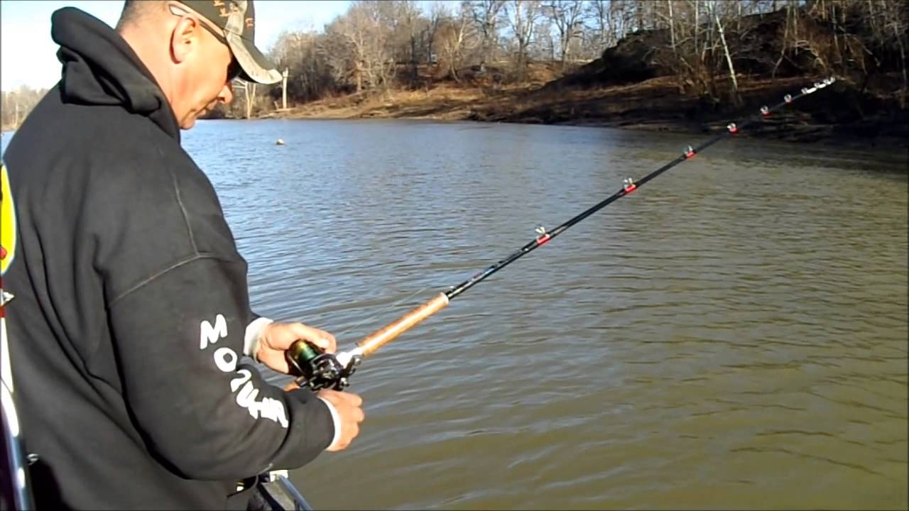Cat fishing in kentucky waters 40lbs youtube for Kentucky out of state fishing license