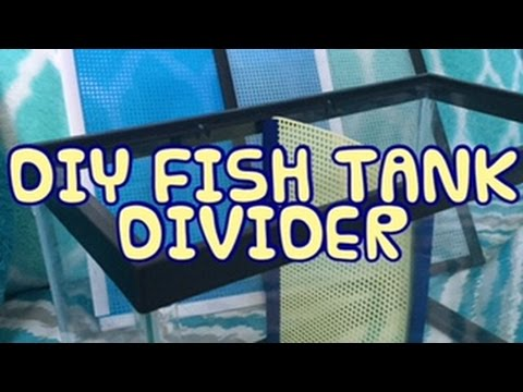 Diy divider for your fish tank youtube for Diy fish tank divider