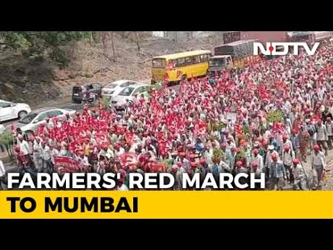 Mumbai Braces For Mega Showdown As Farmers' March Swells To 35,000