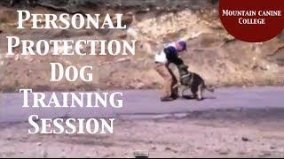 Inside Peak - K-9 Executive Protection Dog Training Session - German Shepherds