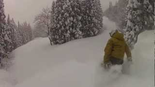 The Best Powder Nozawa Onsen
