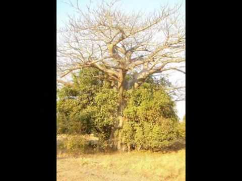 Smokie Haangala Kavundula Zambian Music