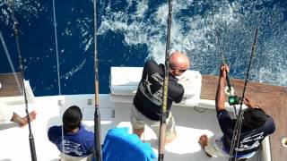 Tags Big Game Fishing Maldives Thumbnail