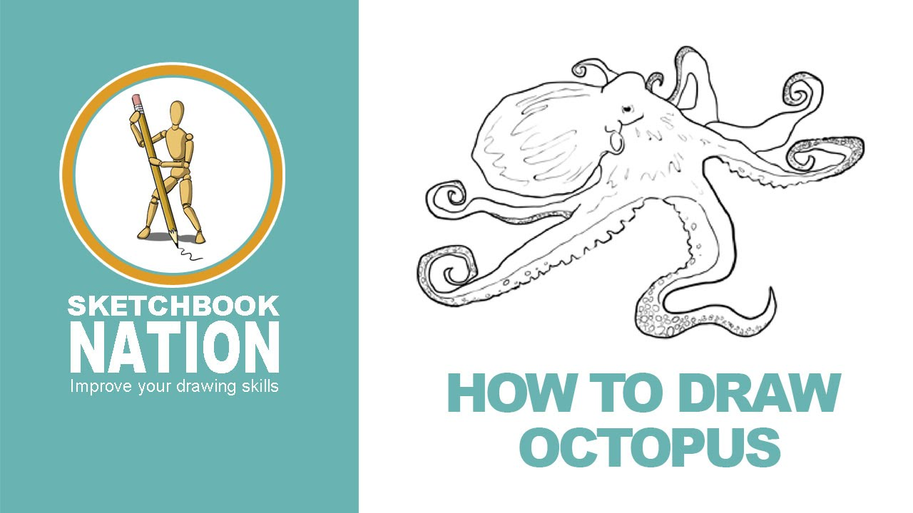 how to draw an octopus youtube