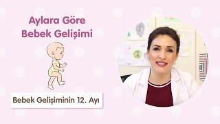 Bebek gelişiminin 12. Ayı - Çocuk Sağlığı ve Hastalıkları Uzmanı Dr. Aylin Şimşek