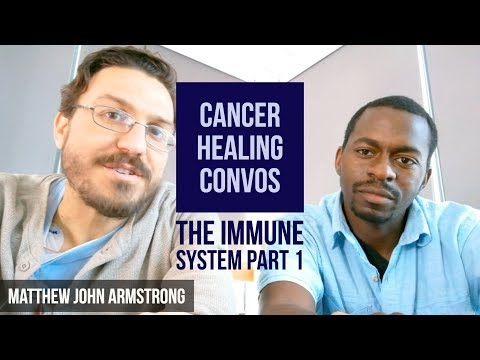 Cancer Healing Convos - The Immune System Part 1