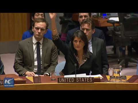 U.S. vetoes UN Security Council draft resolution on Jerusalem