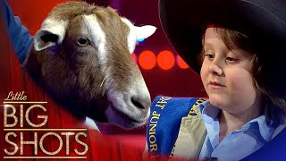How To Milk A Goat With Torino 🥛⬅🐐 | Little Big Shots