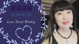十二星座每週愛情運勢6/20-6/26❤️咪咪愛塔羅 thumbnail