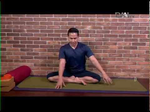Siapa Bilang Yoga untuk Pemula Itu Sulit?