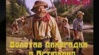 Трейлер Артюкино, Золотая лихорадка