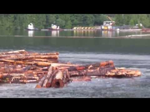 Hercules Log Barge Dump