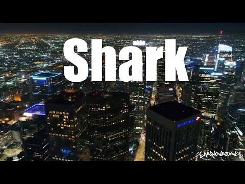 Shark - Showtime (Official Music Video)SharkNations