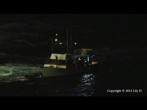Cruise ship assists vessel in distress in the Caribbean Sea. HD.