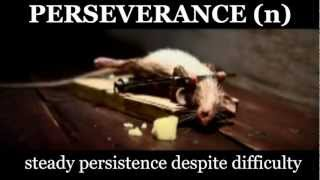 TingoEd Vocab Video - PERSEVERE