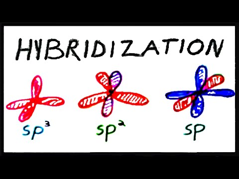 sp3, sp2, and sp Hybridization
