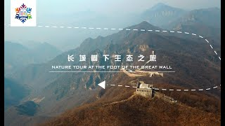 Nature Tour at the Foot of the Great Wall