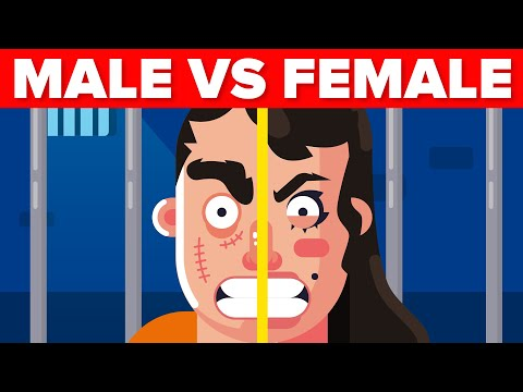 Female vs Male Prison  How DO They Compare