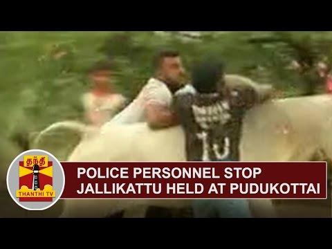 Police Personnel stop Jallikattu Event held despite ban at Pudukkottai   Thanthi TV