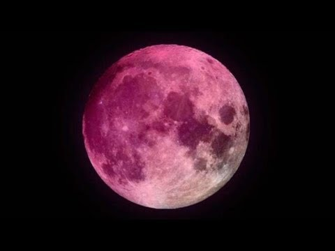 مباشر.. القمر الوردي العملاق في سماء روما  - نشر قبل 37 دقيقة