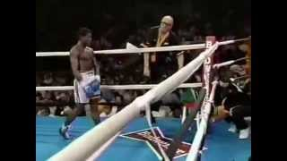Pernell Whitaker vs Rafael Pineda