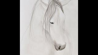 Cómo pintar un caballo con tinta china - Arte Divierte.