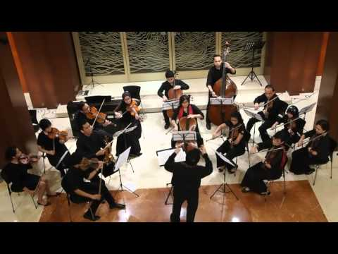 ACME Amateur Chamber Music Ensemble  Overture from Barber of Seville  Rossini