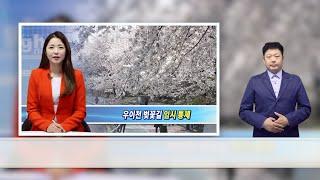 강북사랑상품권 혜택 확대 및 이벤트 안내(수어뉴스)