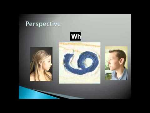 How To Learn From Different Perspectives.flv