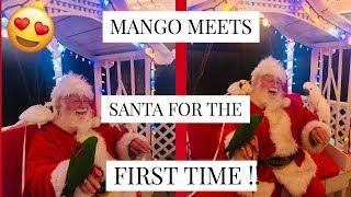 VLOGMAS | DAY 17 : MANGO MEETS SANTA !! FT DAHLIA + PIPPEN || Asia Monet