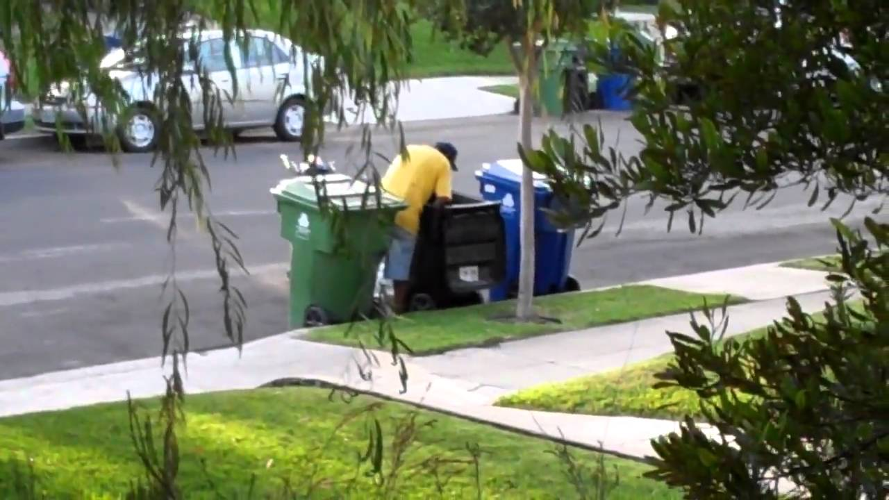 Garbage Scavenger Stealing From Residential Trash Cans
