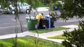 Garbage Scavenger - stealing from residential trash cans in Los Angeles, California