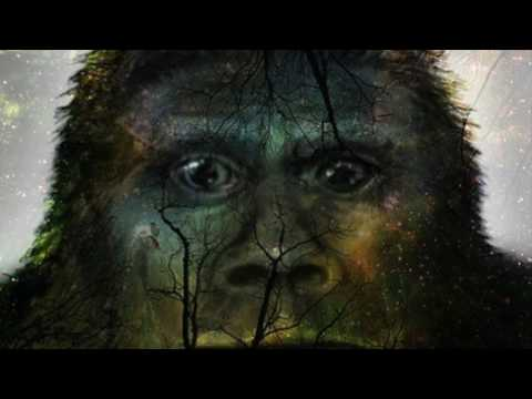 THE SASQUATCH MESSAGE TO HUMANITY