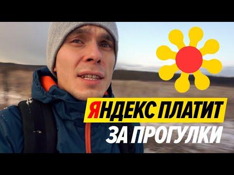 Работа в Яндексе. Ты гуляешь - Яндекс платит.Тестирую полевые задания в Яндекс.Толока.