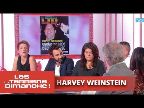 """Harvey Weinstein, """"Oscar du gros dégueulasse"""" - Les Terriens du dimanche"""