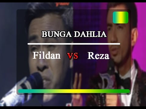 Bunga Dahlia Fildan DA4 vs Reza DA2 #mana yang lebih baik??