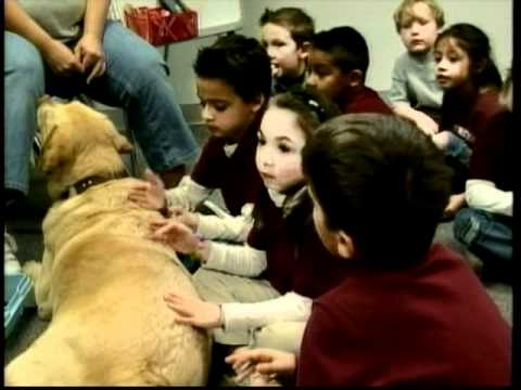 Service Dog Accompanies Autistic Child To School