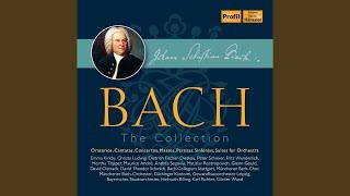 Liebster Gott, wenn werd ich sterben, BWV 8: Accompanied Recitative: Zwar fuhlt mein schwaches...