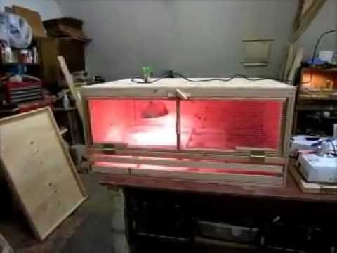 Our large homemade chick brooder (get BIY instructions from our website) - YouTube