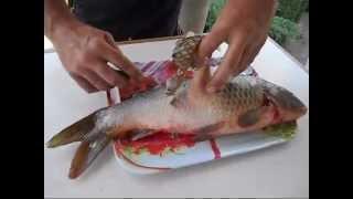Как почистить рыбу в квартире и не испачкать кухню чешуей. How to clean fish.(, 2013-07-14T18:57:04.000Z)