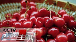 《消费主张》 20190430 水果里的消费升级:国产樱桃为啥比进口车厘子更贵?| CCTV财经