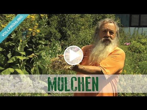 Wolf-Dieter Storl - Der Selbstversorger: Mulchen